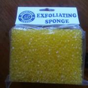 exfoliating-sponge